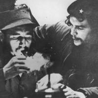 Castro guevara